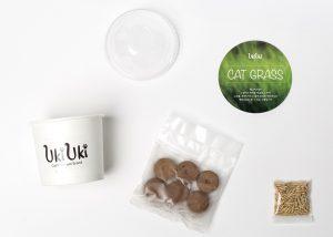 UKIUKI_cat_catglass (4)
